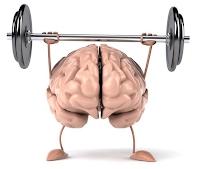 Mozak vježba